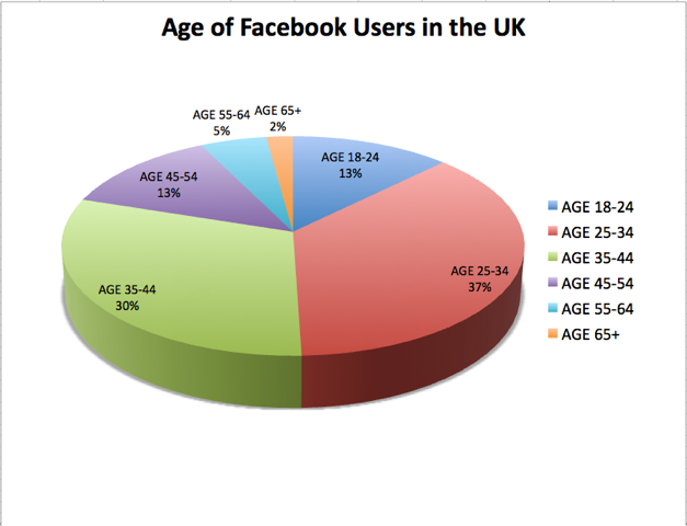 Report Social network demographics in 2012